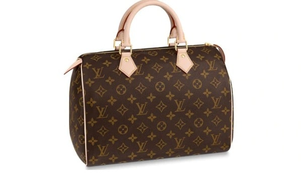 Louis Vuitton Speedy 33 bag