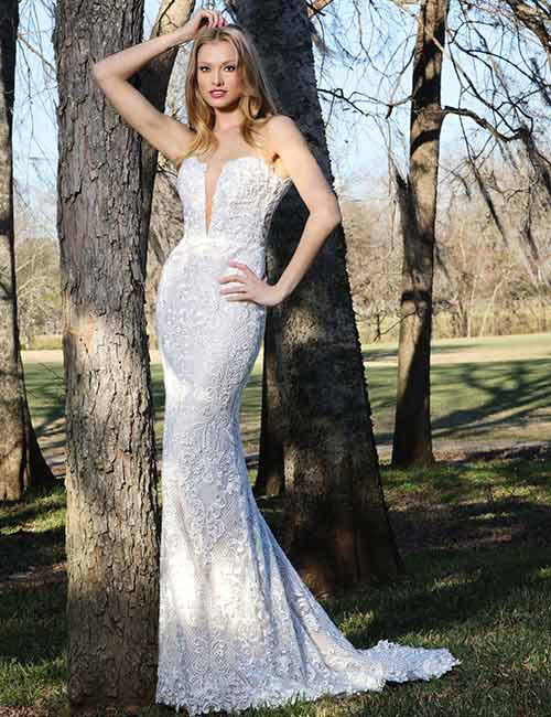 Simple And Affordable Wedding Dresses - Lace-Wedding-Dress-With-Plunge-V-Neckline