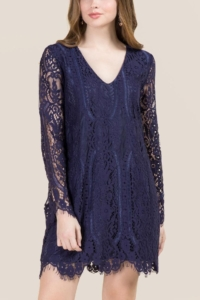 Cutest Winter Dresses - Lace Long Sleeves