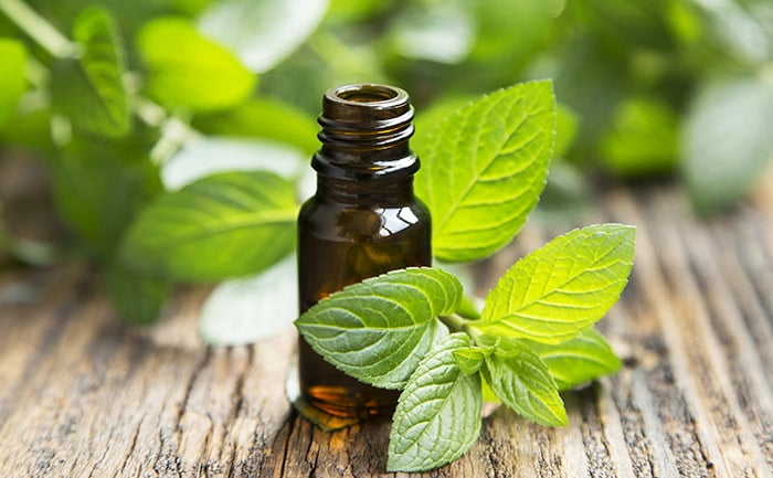 Try Peppermint Oil