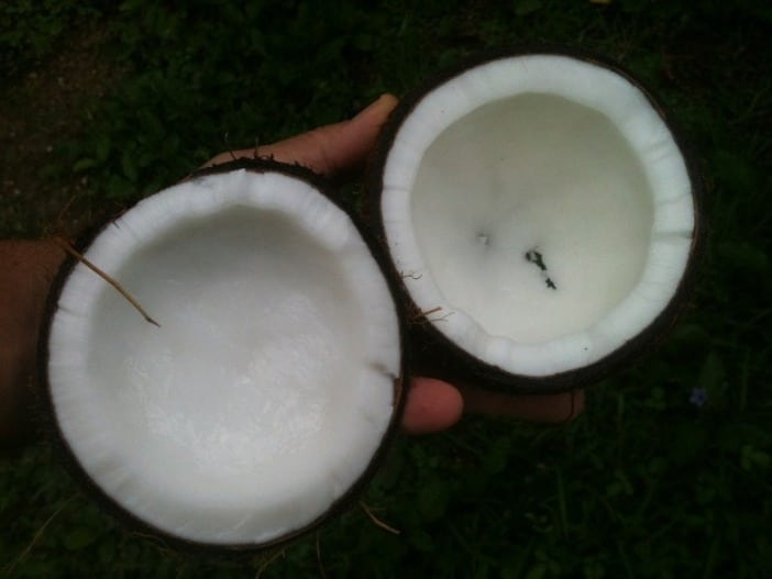 4 - Coconut Oil For Flawless Skin