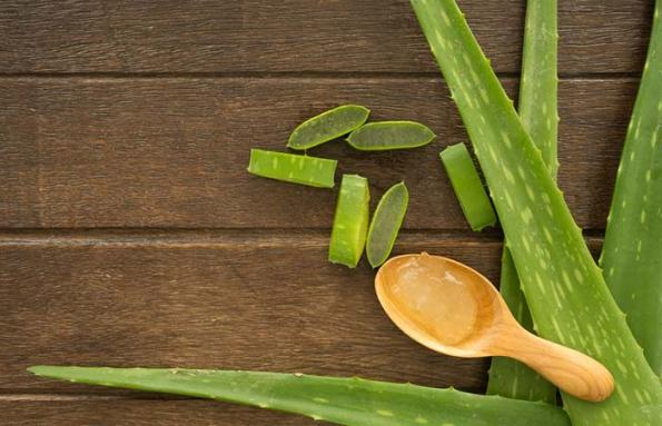 Aloe Vera And Castor Oil
